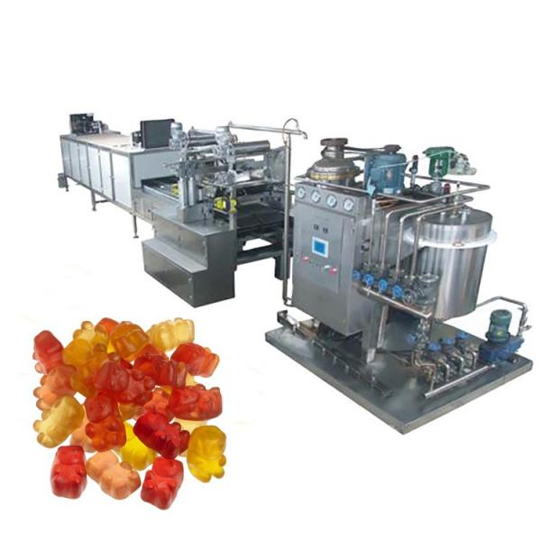 Hard Candy Formed Plant Production Line Candy Equipment for Sale